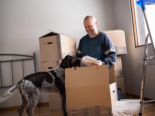Keski-ikäinen mies pakkaa muuttolaatikoita, suuri koira seuraa tarkasti vierestä.